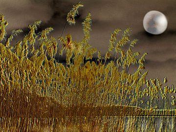 Mystische Nacht van Heidrun Carola Herrmann