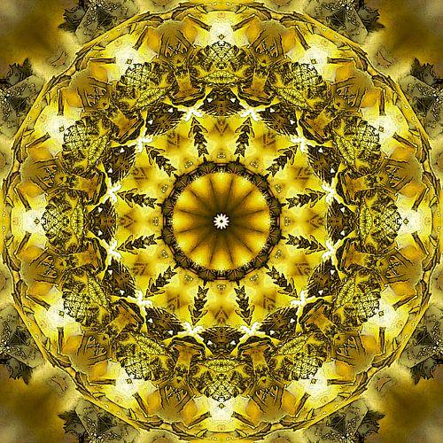 Golden Circle van