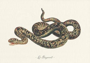 Le Serpent von Walljar