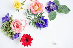 Anemonen, Rozen en Gerbera Bloemen