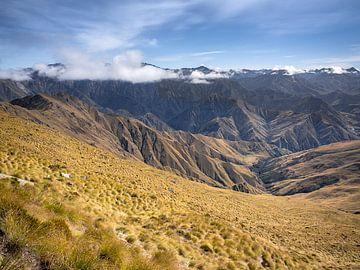 Neuseeland - Queenstown - Gräser an den Flanken des Mount Ben Lomond von Rik Pijnenburg