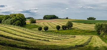 De heuveltjes van het Pajottenland van Werner Lerooy