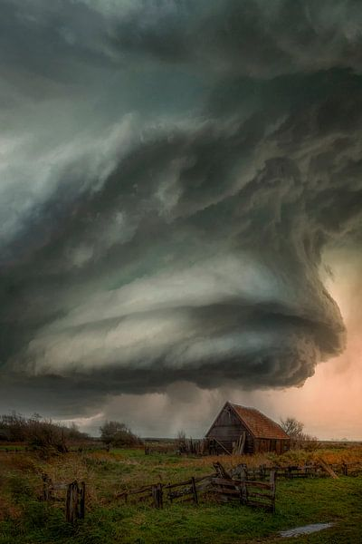 Armageddon at Texel van Roelie Steinmann