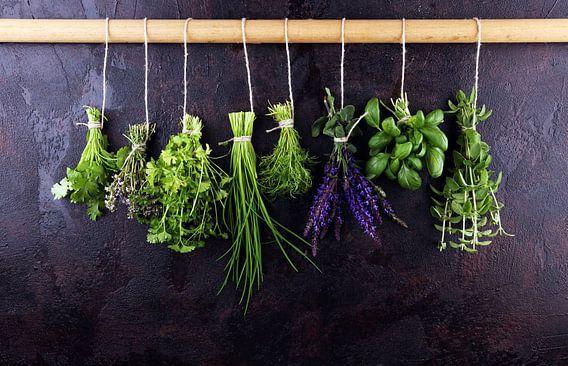 Verse kruiden hangen tegen een rustieke achtergrond. Basilicum, salie, tijm, oregano, dille, biesloo
