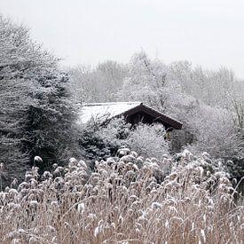 Wintertime van C.A. Maas