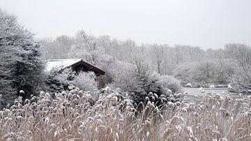 Wintertime van