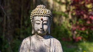 Thai Boeddha. van