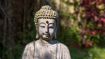 Thai Boeddha. van Cine Prem