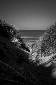 Wijk aan Zee von Terence_photography