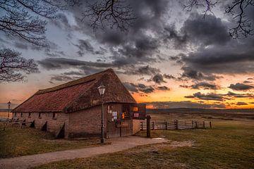 Schaapskooi (Winter) Ginkelse Heide von Joram Janssen