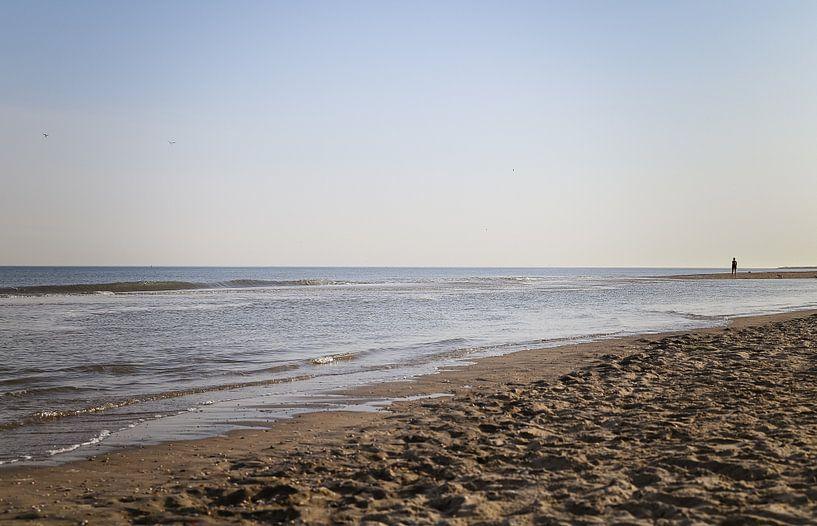 Alleen op het strand van Nicole Boekestijn