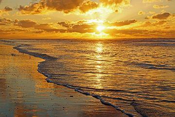 Ik heb de zon zien zakken in de zee von Judith Cool