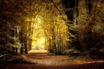 Walk Of Life van Kees van Dongen
