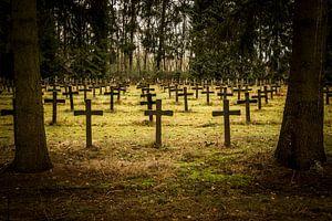 Crosses von Steffi Reimers