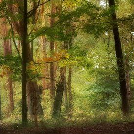 Bomen van Yvonne Blokland