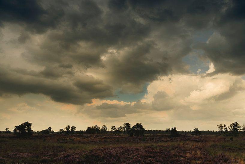 Heidelandschap na een zomerse regenbui van Erna Böhre