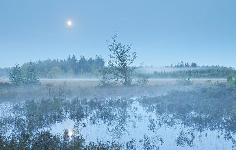 'Een blauwe maandag...' van Karla Leeftink