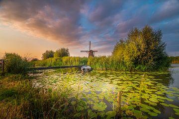 De molens van Kinderdijk van Rob Bout