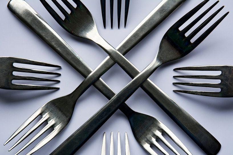 Kruislingse vorken van Christa Thieme-Krus