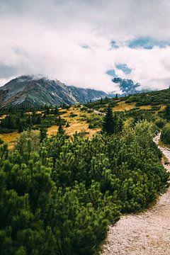 Wolken in de Tatras van Patrycja Polechonska