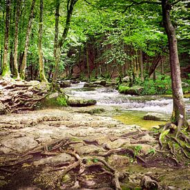 Watervallen van Herisson in de Jura in Frankrijk van Gabi Gaasenbeek