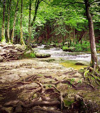 Watervallen van Herisson in de Jura in Frankrijk von Gabi Gaasenbeek