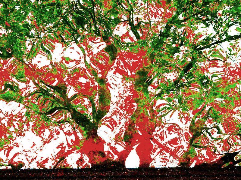 Tree Magic 136-C van MoArt (Maurice Heuts)
