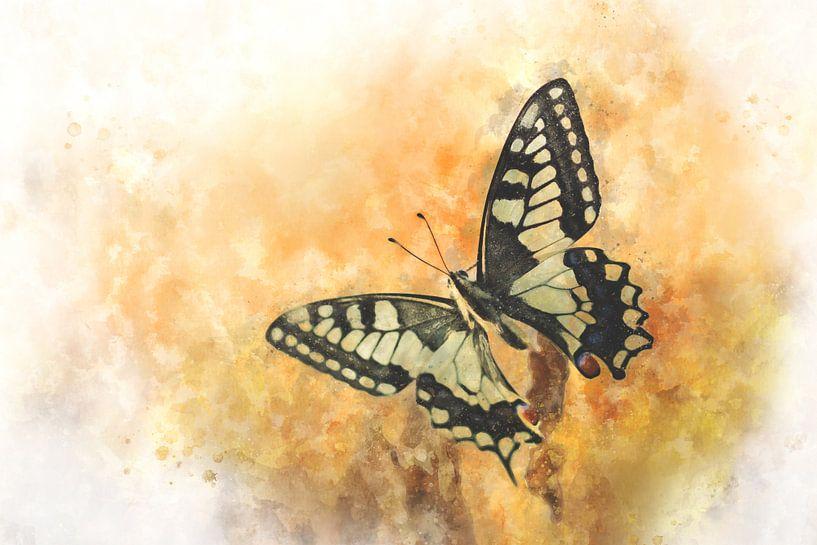 Vlinder 12 van Silvia Creemers