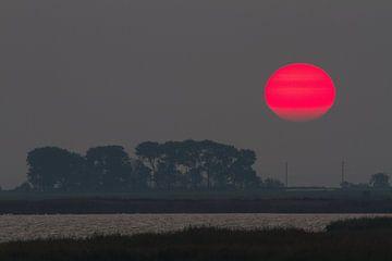 Rote Sonne von Marko Sarcevic