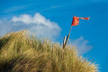 Dunes on the North Sea coast on the island Amrum van