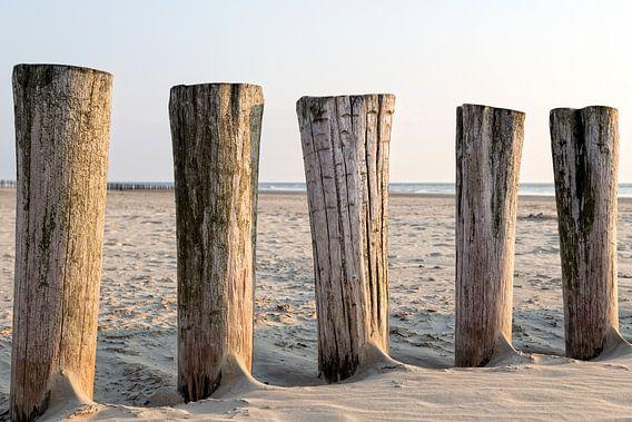 Een dag op het strand..