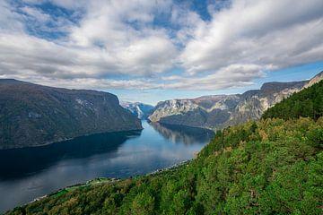 Aurland-Fjord an einem sonnigen Tag von Mickéle Godderis