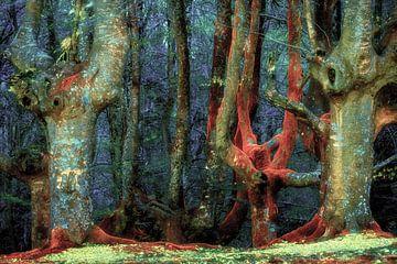 Farbpalette des Waldes von Lars van de Goor