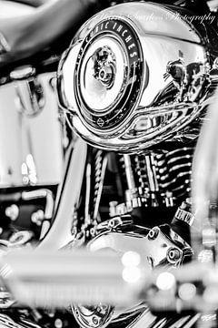 Harley Davidson van Westland Op Wielen