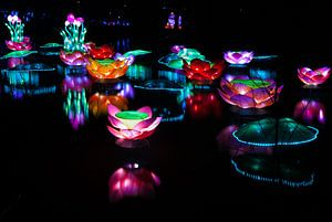 A Lightshow on the water