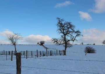 Sneeuwlandschap van Wilma Overwijn