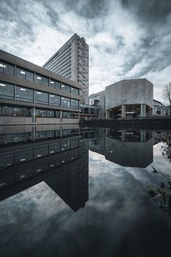 Erasmus Universiteit Rotterdam Reflectie van vedar cvetanovic