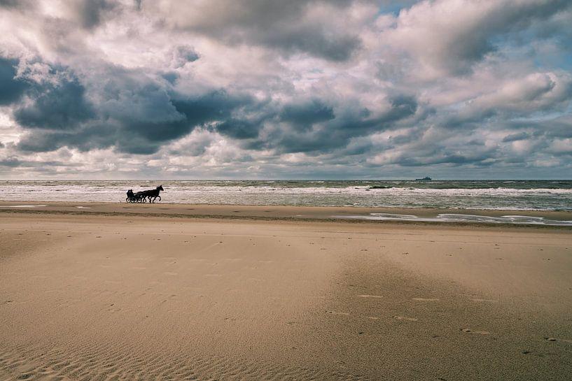 Paarden op het Noordzeestrand van eric van der eijk