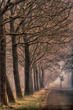 Bomenlaan in de mist van Marcel Kieffer