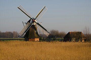 Noordermolen Groningen van Sandra de Heij