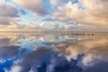 Wadden Meer nahe Wierum, die Niederlande. von AGAMI Photo Agency