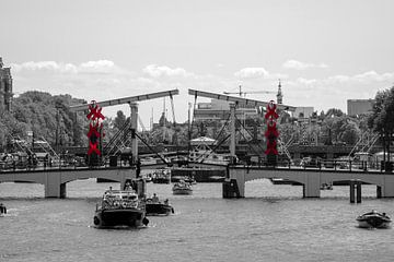 Magere brug van Peter Bartelings Photography