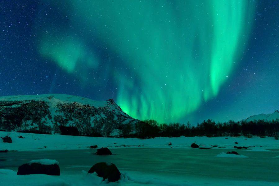 Nordlichter über den schneebedeckten  Gipfeln der Lofoten in Norwegen von Sjoerd van der Wal
