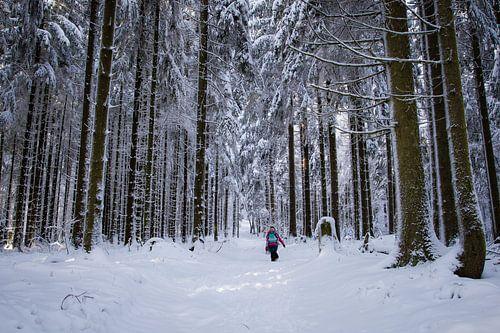 Hiken in de sneeuw in Duitsland