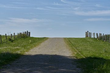 Kasseiweg aan het weiland van Geert van Kuyck