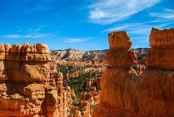 Above the trees in Bryce Canyon - USA von Ricardo Bouman