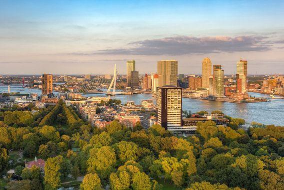 Evening sun in Rotterdam