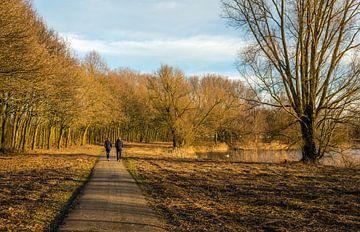 Man en vrouw wandelen samen over een bospad von Ruud Morijn