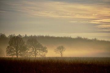 Landschaft, Duurswoude von Meta Mulder-Veening