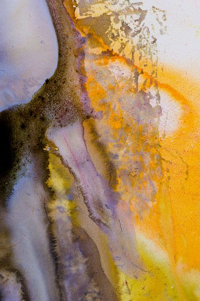 Macrofoto oranje en wit met acrylverf van angelique van Riet